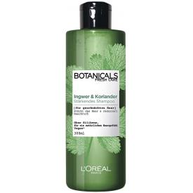 L'Oreal Paris Botanicals Fresh Care Stärkendes Shampoo Ingwer & Koriander
