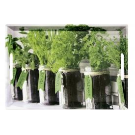 Kesper Serviertablett Herbs 48x30x3,5cm