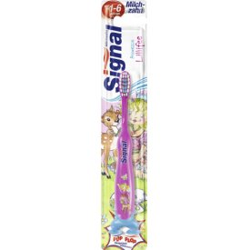 Signal Zahnbürste Kids