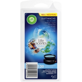 Airwick Duftwachs Life Scents Tag am Meer Nachfüller