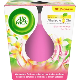 Airwick Duftkerze Essential Oils Blumenwiese
