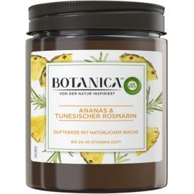 Botanica by AirWick Duftkerze Ananas & Tunesischer Rosmarin