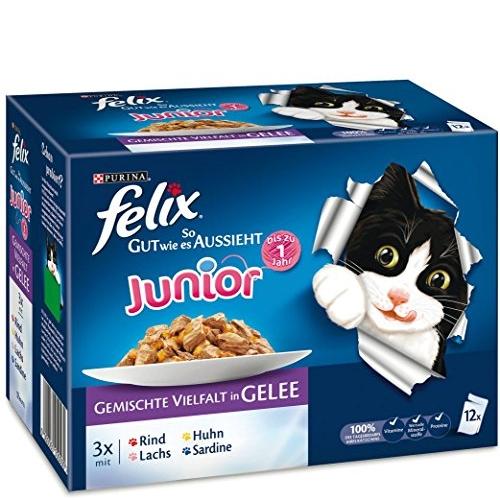 katzenfutter felix katzenfutter so gut wie es aussieht junior gemischte vielfalt in gelee 100g. Black Bedroom Furniture Sets. Home Design Ideas