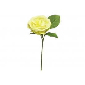 Englische Rose 28cm gelb