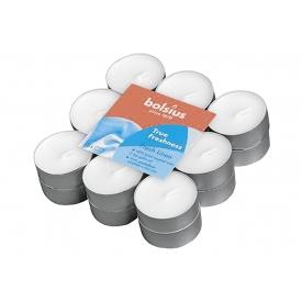 Bolsius Duft Teelichte True Freshness Morgenfrische 18er Pack