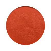 Provida Organics Luminous Shimmer Blush 5