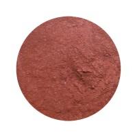 Provida Organics Luminous Shimmer Blush 1